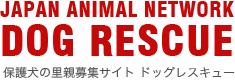 保護犬の里親募集サイト ドッグレスキュー DOG RESCUE JAPAN ANIMAL NETWORK